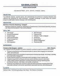 Resume Sample For Designers Web Designer Resume Example Development Seo Social Media