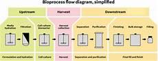 Bioprocess Flow Chart Upstream Processing Equipment Sciencedirect