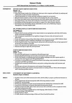 Resume For Customer Service Executive Client Service Executive Resume Samples Velvet Jobs