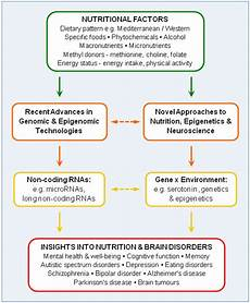 Nutrients Free Full Text Genomic And Epigenomic