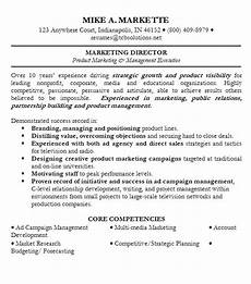 Resume Summary Examples Sales How To Write An Amazing Professional Summary