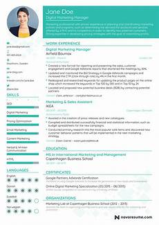 Cv Format For Marketing Executive Marketing Manager Resume Example Update Yours Now For 2019