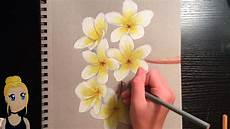 Drawings Of A Flower How To Draw Realistic Flowers With Colored Pencils Youtube