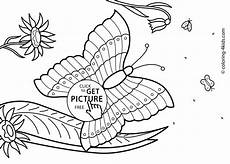 Kostenlose Malvorlagen Sommer Butterfly Summer Coloring Pages For Free Printable