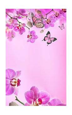 phone flower wallpaper apps pink flowers live wallpaper apps on play