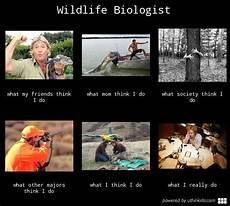 What Do Wildlife Biologists Do Wildlife Biologist What I Think I Do Google Search