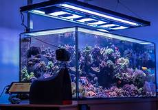 T5 Hybrid Reef Light Aquaticlife T5 Hybrid Light Fixture The Definitive Review
