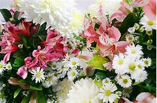 Flower Decoration Ke Wallpaper by Free Photo Flowers Floral Free Image On