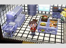 Animal Crossing: Happy Home Designer Blog, Days 19 20