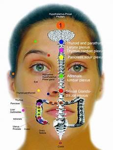 Face Reflexology Chart Facial Reflexology Bryan Beauty Training