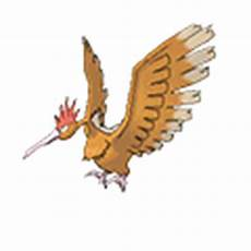 Pokemon Spearow Evolution Chart Fearow Pok 233 Dex Stats Moves Evolution Amp Locations