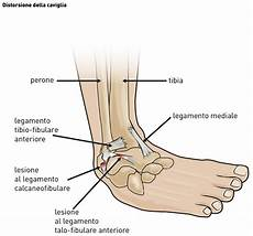 interno caviglia distorsione della caviglia i consigli di silvio reffo