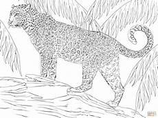 Kinder Malvorlagen Jaguar Ausmalbilder Kinder Jaguar Kinder Ausmalbilder