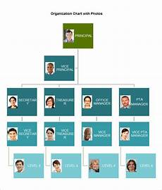 Organization Chart Template Word Organizational Chart Template 19 Free Word Excel Pdf