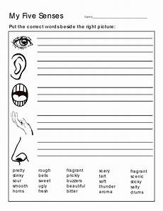 5 senses worksheet letters free loving printable