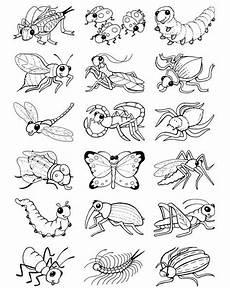 malvorlagen insekten in tiffanylovesbooks