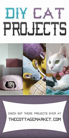 diy cat projects the cottage market
