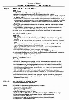 Project Analyst Resume Sample 12 Program Analyst Resume Sample Radaircars Com