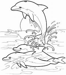 657 best images about coloring book on more