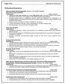 Resume Writing Objective Statement Resume Objective Statement