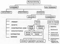 Business Activities Chart Scope Of Commerce Means Coverage Of Commerce