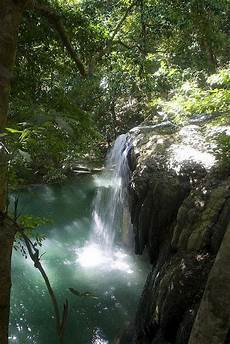 18 best tropical waterfalls images on pinterest
