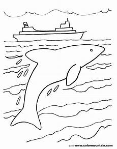 dolphin jumping drawing at getdrawings free