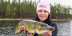 stor fisk i storsj 246 finns allt f 246 r bra fiske menar sussi stridh