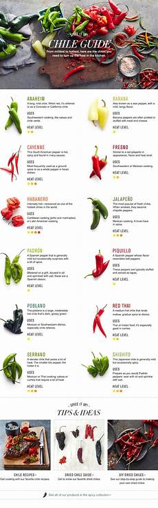 Pepper Chart The Gallery For Gt Types Of Chili Peppers Chart