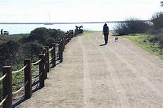 Tide Chart Old Silver Beach Pillar Point Marsh Beach Half Moon Bay Ca California