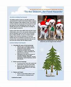 Holiday Family Newsletter Templates Sample Family Newsletter Template 12 Free Documents