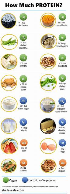 Protein Grams In Food Chart What Foods Are Good Sources Of Protein Kealey