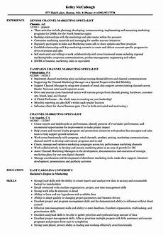 Marketing Specialist Resume Sample Channel Marketing Specialist Resume Samples Velvet Jobs
