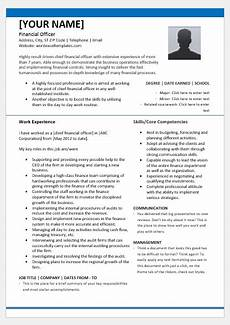 Chief Financial Officer Resume Chief Financial Officer Resume Template For Word Word