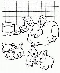 colouring pictures of rabbits coloring home
