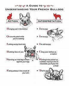 French Bulldog Growth Chart Click Visit Site And Check Out Best Frenchie Shirts This