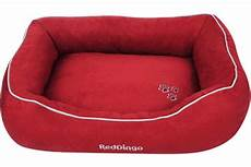 dingo donut bed dn mf re