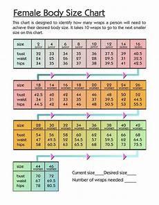 Body Size Chart Female Body Size Chart