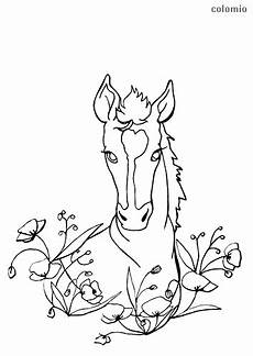 horses coloring pages 187 free printable 187 coloring