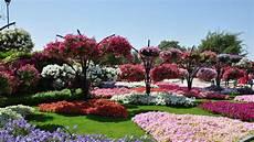 Flower Wallpaper Garden by Beautiful Garden Wallpaper Flower Wallpapers 35382