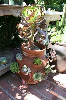 fiori vaso vasi di fiori 30 idee originali per illuminare il tuo