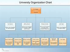Sample Of Organisation Chart Conceptdraw Samples Orgcharts