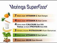 Moringa Chart Moringa Oleifera The Miracle Moringa Tree Health Benefits