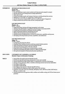 Sap Consultant Resume Sap Mm Consultant Resume Samples Velvet Jobs