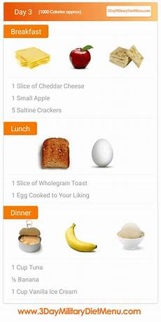 3 day diet menu beginner s guide meal plan