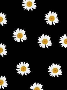 flower wallpaper we it wallpaper shared by andre on we it