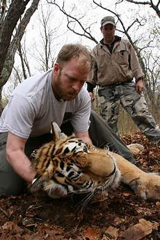 What Do Wildlife Biologists Do Tiger Experts Cross The Globe To Learn From Montana