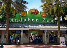 Zoo Lights New Orleans Things To Do In New Orleans With Kids Visit Audubon Zoo