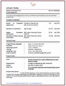 Curriculum Vitae Samples For Freshers Professional Curriculum Vitae Resume Template For All