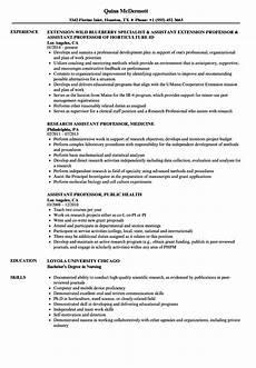Professor Resume Examples Professor Assistant Resume Samples Velvet Jobs